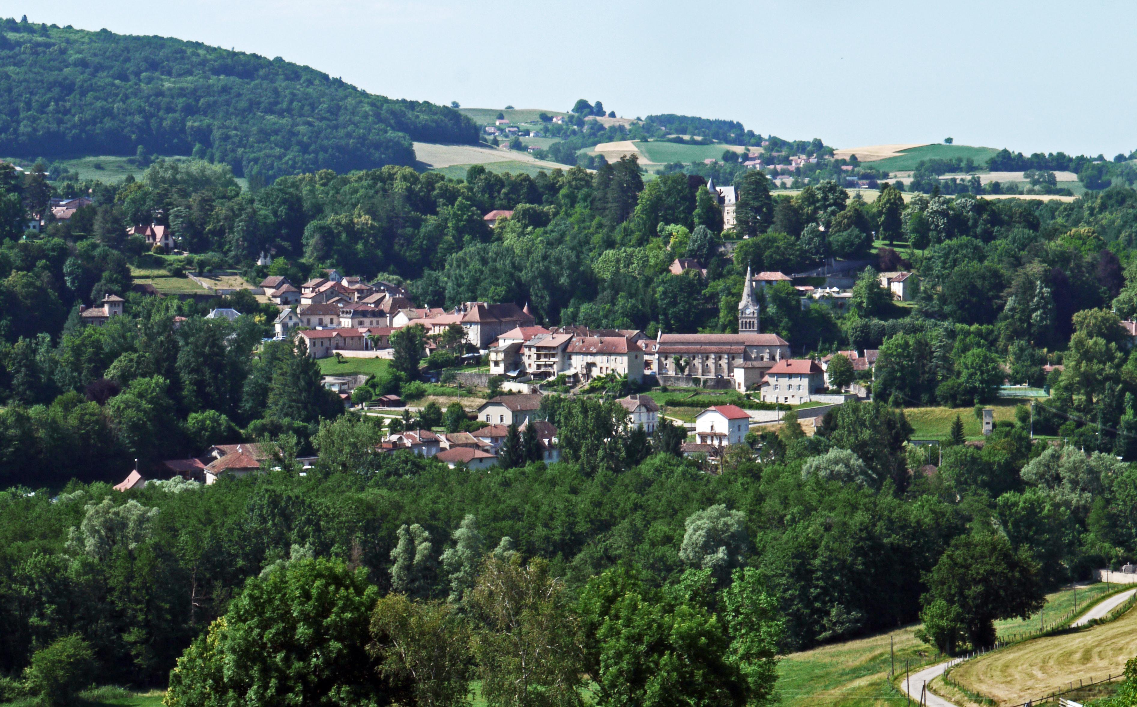 Vue générale de Saint-Geoire-en-Valdaine.