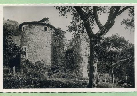 Fortification chateau de Tullins, photo A.Meyer © Patrimoine culturel
